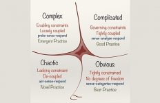 Cynefin framework