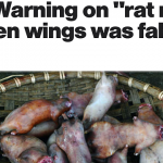 "FDA: Warning on ""rat meat"" chicken wings was fake news"
