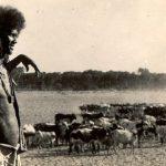 Tigre man from Barka Valley