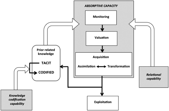 A model of absorptive capacity