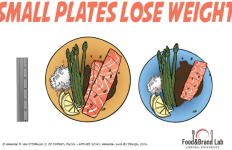 Small Plates Lose Weight