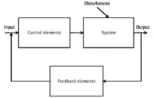 Example of a feedback system