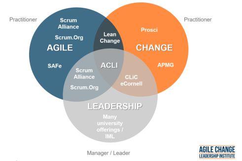 Agile Change Leadership
