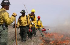 Firefighters at Knife River Indian Villages during a controlled burn
